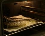 Пълнен шаран с рибен мус 9