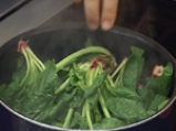Зеленчуков трибагреник