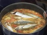 Дребна морска риба а ла мартеник 3