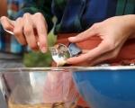 Печени миди с картофи и ориз