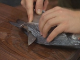 Ципура на фурна със зелен сос