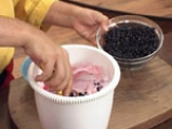 Сладолед от кисело мляко и горски плодове с бадемов пралин 8