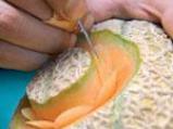 Водна лилия от пъпеш 4