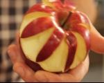 Ябълково цвете 3