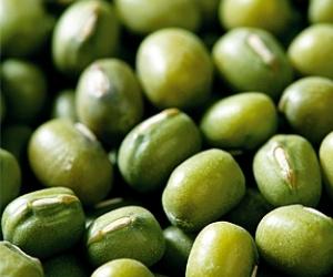 Зеленият боб