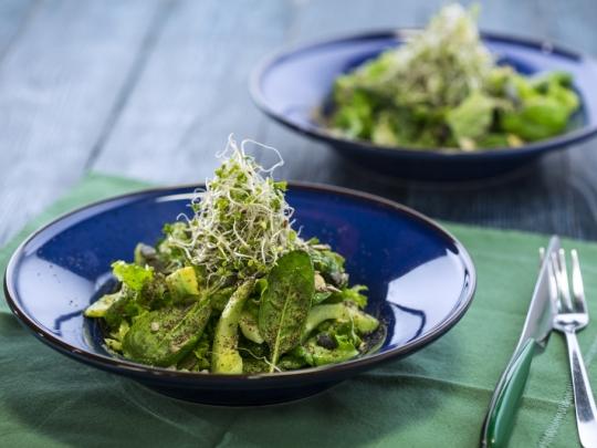 Зелена салата с авокадо и семена