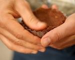 Шоколадови тарталети с боровинки 4