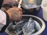 Рибена чорба от Приморско 2