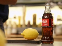 Как да спасим лимона от изсъхване?