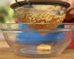 Октопод на скара с топъл хумус 5