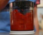 Паста от червени чушки 2