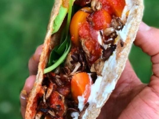 Лесен сандвич с патладжан, песто и ве...