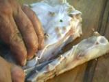 Филе от калкан със сос