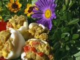 Пълнени яйца с чушки по казанлъшки