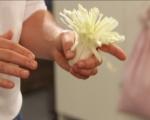 Хризантема от праз 4